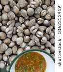 close up boiled cockles  with... | Shutterstock . vector #1062252419