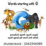 words strating with letter g...