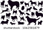 set of silhouettes of the dogs... | Shutterstock .eps vector #1062581879