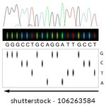 DNA sequencing principle - stock photo