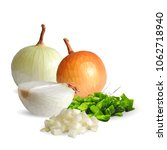 fresh  nutritious  tasty onion. ... | Shutterstock .eps vector #1062718940