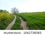 country road in mollet del... | Shutterstock . vector #1062738383