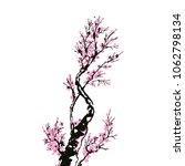 cherry blossom  sakura tree... | Shutterstock .eps vector #1062798134