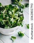 lamb's lettuce salad | Shutterstock . vector #1062802793