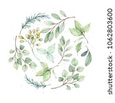 watercolor illustration.... | Shutterstock . vector #1062803600