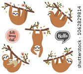 vector set of cute sloths... | Shutterstock .eps vector #1062829814