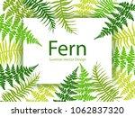 fern frond tropical leaves...   Shutterstock .eps vector #1062837320