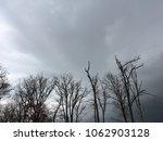 blue gray sky. bare trees.... | Shutterstock . vector #1062903128