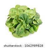 fresh baby spinach leaves...   Shutterstock . vector #1062989828