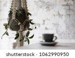 macrame plant hanger against an ... | Shutterstock . vector #1062990950