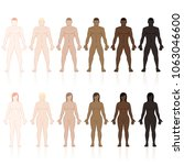 male and female bodies with... | Shutterstock .eps vector #1063046600
