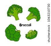 broccoli. vector set of hand... | Shutterstock .eps vector #1063210730