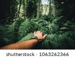 Small photo of Close up of explorer male hand in green rainy forest.Survival travel,lifestyle concept.