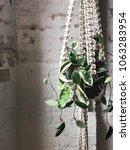 macrame plant hanger against an ... | Shutterstock . vector #1063283954