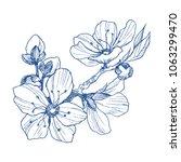 almond blossom branch isolated... | Shutterstock .eps vector #1063299470