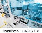 saint petersburg  russia  ... | Shutterstock . vector #1063317410
