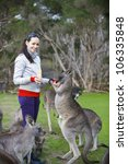 Family Feeding Kangaroos In...