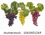 closeup of grapevine set with...