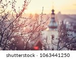 spring in the city. blooming... | Shutterstock . vector #1063441250