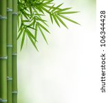 Bunch Of Bamboo With Leaves...