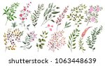 watercolor illustration.... | Shutterstock . vector #1063448639