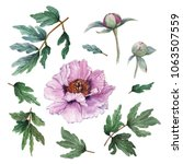 set of hand painted floral... | Shutterstock . vector #1063507559
