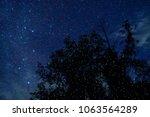 Stock photo fireflies glowing at night 1063564289