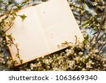 book. eampty book. old book.... | Shutterstock . vector #1063669340
