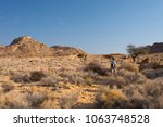 one person hiking in the namib... | Shutterstock . vector #1063748528