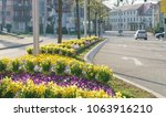 flowers at the street   urban... | Shutterstock . vector #1063916210