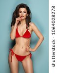 sexy brunette woman wear pastel ... | Shutterstock . vector #1064028278
