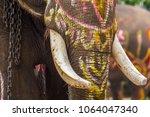 thai's elephants  body paint ...   Shutterstock . vector #1064047340