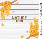 rice   wheat   barley and oats... | Shutterstock .eps vector #1064085680