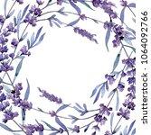 violet lavender. floral... | Shutterstock . vector #1064092766