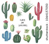 watercolor set of cacti and... | Shutterstock . vector #1064157050