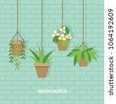 house plants in hanging flower... | Shutterstock .eps vector #1064192609