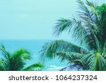 coconut palm trees with blue... | Shutterstock . vector #1064237324
