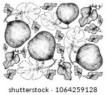 exotic fruit  illustration... | Shutterstock .eps vector #1064259128