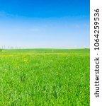 grass land nobody outside    Shutterstock . vector #1064259536