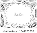 exotic fruit  illustration... | Shutterstock .eps vector #1064259890