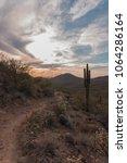 Small photo of Scottsdale Arizona Desert Hike