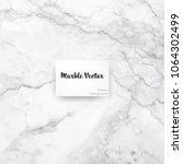 carrara white marble texture... | Shutterstock .eps vector #1064302499