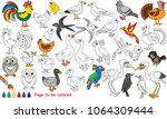 bird set to be colored  the... | Shutterstock .eps vector #1064309444