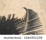shadow of palm leaves on... | Shutterstock . vector #1064351228