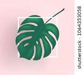 monstera vector leaf  template...   Shutterstock .eps vector #1064353058