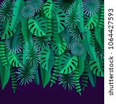 green tropical leaves and... | Shutterstock .eps vector #1064427593