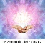 the sacred lotus   female...   Shutterstock . vector #1064445350