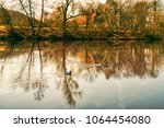 Landscape With Three Ducks In ...