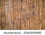 texture of wood   Shutterstock . vector #1064504480