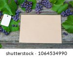 vine with grapes and leaves on... | Shutterstock . vector #1064534990